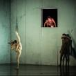 Spectacle BACON à CALAIS @ Grand Théâtre - Billets & Places