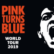 Soirée Pink Turns Blue + Lyncelia