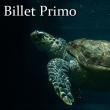 """EXCLU WEB - BILLET """"PRIMO 2018"""""""