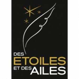 MEETING AERIEN DES ETOILES ET DES AILES - PASS 2 JOURS @ Aéroport Toulouse Francazal - PORTET SUR GARONNE