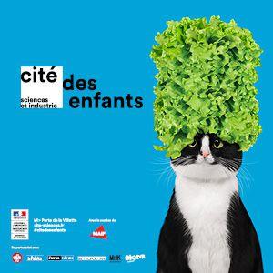Cité Des Enfants 2-7 Ans