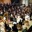 Concert ORCHESTRE SCHWIEBERDINGEN