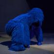 Spectacle L'ORANG-OUTANG BLEUE à ANGERS @ LE QUAI - THEATRE 400 - Billets & Places