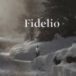 Spectacle FIDELIO - NANTES