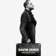 Concert GAVIN JAMES