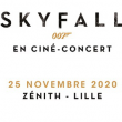 Concert SKYFALL