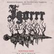 Concert IGORRR