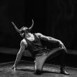 Théâtre RAGING BULL à MELUN @ Escale NN - Billets & Places