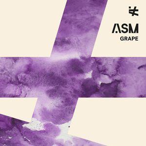 Rhino + Asm - A State Of Mind