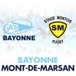 Match Aviron Bayonnais - Mont de Marsan à BAYONNE @ Stade Jean-Dauger - Billets & Places