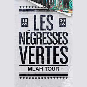 Les Négresses Vertes + Arash Sarkechik