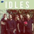 Concert IDLES + BISON BISOU