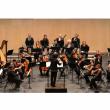 Concert Ensemble Orchestral de la Cité