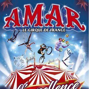 Cirque Amar - Bayonne @ PARKING DES ALLEES PAULMY - BAYONNE