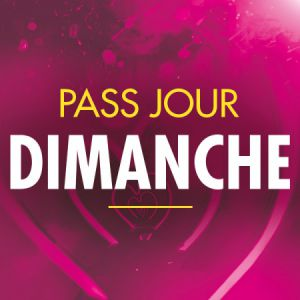 Solidays 2020 - Pass Dimanche