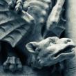 Soirée FOSSILES, MYTHES ET LEGENDES à VENELLES @ Salle des Fêtes - Billets & Places
