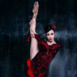 Concert Carmen et Sherazade par le ballet National de Kiev à MENTON @ THEATRE FRANCIS  PALMERO - Billets & Places