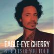 Concert EAGLE EYE CHERRY à BESANÇON @ Le Grand Kursaal - Billets & Places