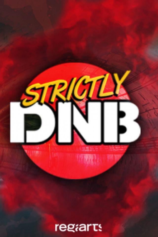 Strictly DnB : FRICTION, MC LINGUISTICS, COMMIX, SKANKANDBASS @ LE BIKINI - RAMONVILLE