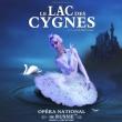 Spectacle LE LAC DES CYGNES à GRENOBLE @ Le Summum - Billets & Places