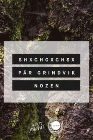 Soirée Blind : Pär Grindvik, SHXCXCHCXSH, Nozen à PARIS @ Nuits Fauves - Billets & Places