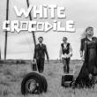Concert WHITE CROCODILE + CLOWNAGE à Paris @ Divan du Monde - Billets & Places