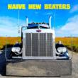 Concert Naïve New Beaters + guest