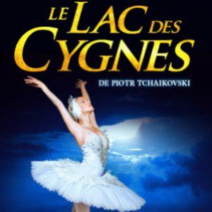 Le Lac Des Cygnes à Montmorot At Juraparc Le 24 Janvier 2020