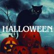 Spectacle Halloween 2019