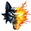 Match Etoile Noire de STRASBOURG vs Brûleurs de Loups de GRENOBLE