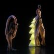 Spectacle Le Ballet royal de la nuit