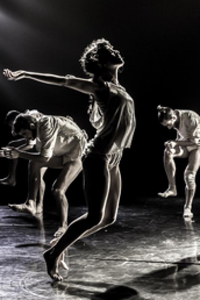 Kibbutz Dance Company @ Gare du Midi - Biarritz