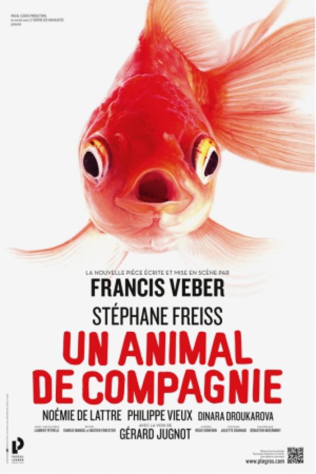 UN ANIMAL DE COMPAGNIE @ Casino Théâtre Barrière Toulouse - Toulouse