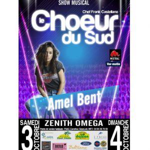 Le Choeur Du Sud-Show Musical