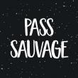 Festival LES INSOLANTES - PASS SAUVAGE / Vague 1