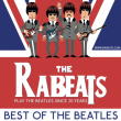 Concert THE RABEATS à Toulouse @ ZENITH TOULOUSE METROPOLE - Billets & Places