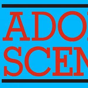 The Adolescents + Shitstorm + The Socials