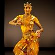 Spectacle SWAYAMBHU - Shantala Shivalingappa à NANTES @ THEATRE GRASLIN - Billets & Places
