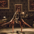 "Spectacle CIRQUE LE ROUX - ""THE ELEPHANT IN THE ROOM"""