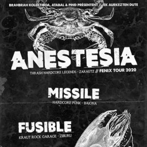 Anestesia +  Vulk + Missile + Fusible - [Punk Is Not Dead ]