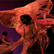 Spectacle ESENCIA FLAMENCA à PLOUGONVELIN @ THEATRE ESPACE KERAUDY - Billets & Places