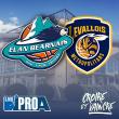 Match ELAN BEARNAIS / LEVALLOIS à PAU @ Palais des Sports de Pau - Billets & Places