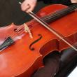 Concert Concours Appassionato Violoncelle Joël Klépal