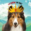 Concert 6eme ANNIVERSAIRE : BOOGALOO BAL TIKI à LA ROCHELLE @ LA SIRENE  - Billets & Places
