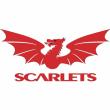 Match Aviron Bayonnais - Scarlets  à BAYONNE @ Stade Jean-Dauger - Billets & Places