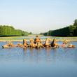 Visite guidée : Les jardins de Marie-Antoinette au Petit Trianon