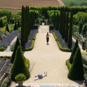Musicales Dans Les Vignes - Jazz Manouche Au Chateau Val Joanis