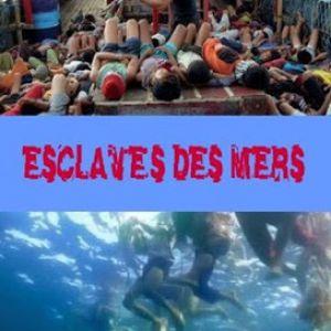 Cinéclub - Esclaves Des Mers