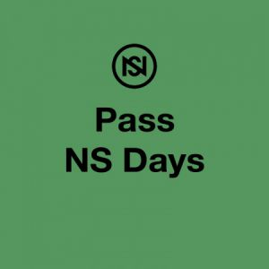 Nuits Sonores : Pass Ns Days