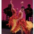 Spectacle ESENCIA FLAMENCA à  @ AGORA 306 - Billets & Places